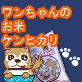 ワンちゃんのお米 ドックフード  ケンヒカリ450g×3個セット [送料別]