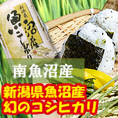 <img class='new_mark_img1' src='https://img.shop-pro.jp/img/new/icons25.gif' style='border:none;display:inline;margin:0px;padding:0px;width:auto;' />【令和2年産】魚沼コシヒカリ [送料別] 新潟県