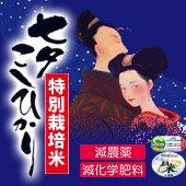 【令和元年度】七夕米コシヒカリ<特別栽培>[送料別] 佐賀県