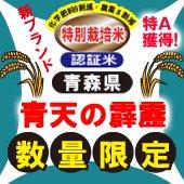 【令和1年度】青天の霹靂(へきれき)[送料別]青森県