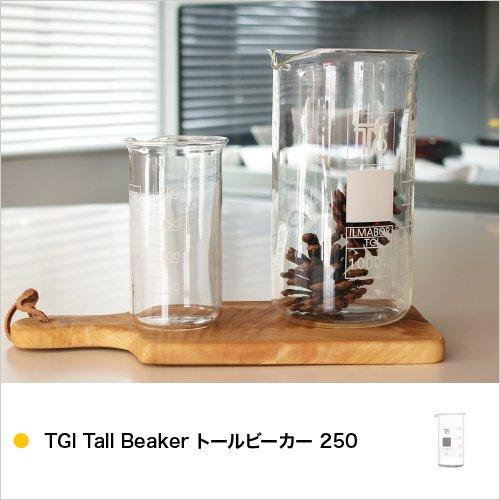TGI Tall Beaker トールビーカー 250