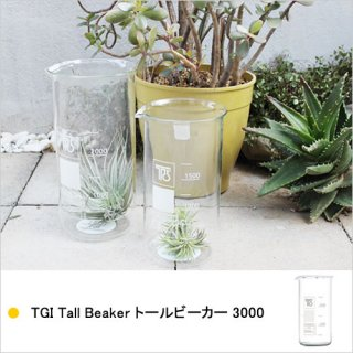 TGI Tall Beaker トールビーカー 3000 キャニスター