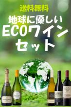 地球に優しいECOワインセット【南アフリカワイン】【送料無料】