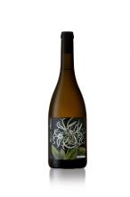 ボタニカ メアリー・デラニー シュナン・ブラン 2017 Botanica Mary Delany Collection Chenin Blanc 【南アフリカワイン】