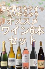 暑い夏でもクイっといけちゃうオススメワイン6本セット 【送料無料】【南アフリカワイン】