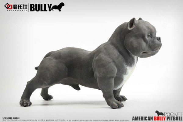16 spuaeworld american bully pitbull 16 16 spuaeworld american bully pitbull voltagebd Choice Image