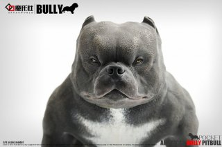 <img class='new_mark_img1' src='//img.shop-pro.jp/img/new/icons11.gif' style='border:none;display:inline;margin:0px;padding:0px;width:auto;' />1/6 SPUAEWORLD American BULLY PITBULL アメリカ ピットブル  犬
