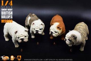 予約1/4 ToysCity M-9009 A/B/C/D Animal series British Bulldog (アニマルシリーズ ブリティッシュ ブルドッグ)