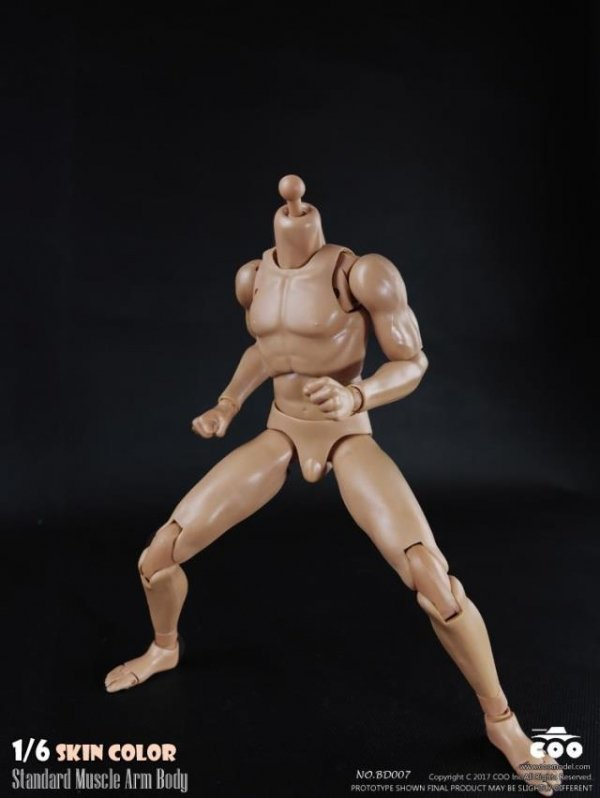 COOMODEL BD007 BD008 1//6 Male Skin Color Muscle Arm Body