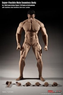 送料無料 1/6 TBLeague PL2018-M35 超柔軟性 シームレス 男性素体 筋肉タイプ