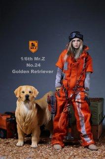 1/6 MR.Z No.24 Golden Retriever イギリス原産 大型犬 ゴールデン・レトリバー