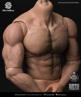 1/6 Worldbox AT027 筋肉男性 ハイタイプ素体 高さ33センチ