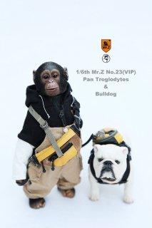 送料無料 1/6 MR.Z No.23 MRZ023 ブルドッグとチンパンジーセット VIP版