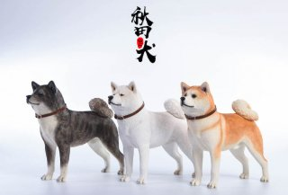 1/6 JxK.Studio Jxk007 日本秋田犬