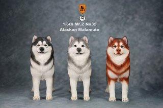 1/6 MR.Z NO.32 アラスカン・マラミュート犬