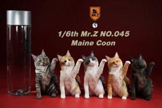 送料無料 1/6 MR.Z  MRZ045 メインクーン 猫