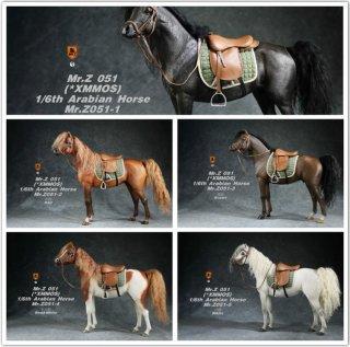 送料無料 予約 1/6 MR.Z  MRZ051 アラブ種 馬と馬具
