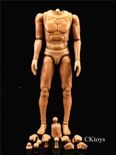 送料無料 1/6 CKTOYS male Body  2021最新版 男性素体ボデイ