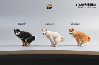 送料無料 1/6 JXK studio JXK053A/B/C 日本柴犬
