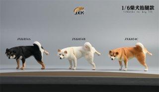 送料無料 1/6 JXK studio JXK054A/B/C 日本柴犬
