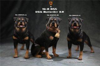 送料無料 予約 1/6 MR.Z  MRZ055 ドイツ  ロットワイラー犬