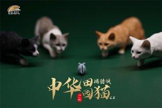 送料無料 1/6 JXK studio JXK062 中華田園猫 とネズミ