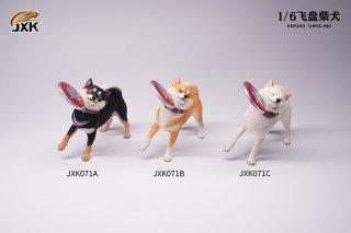 予約 送料無料 1/6 JXK studio JXK071 フリスビー 可愛い柴犬