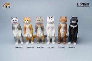 予約 送料無料 1/6 JXK studio JXK084 ブリティッシュショートヘアスタンド直立猫