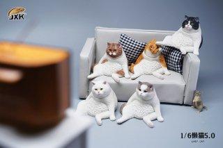予約 送料無料 1/6 JXK studio JXK086 猫 5.0版