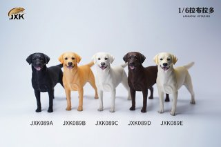 予約 送料無料 1/6 JXK studio JXK089 ラブラドール・レトリバー犬