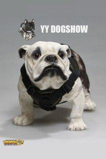 1/6 VERYHOT VH1045  YY DOGSHOW ドッグショーセット 男性マンズ服と犬