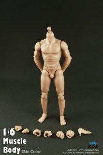 1/6 COOMODEL B34003  Muscle male Body  2015最新版 男性素体