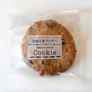 ※季節限定商品のため只今ご購入いただけません オートミールクッキー(チョコチップ)