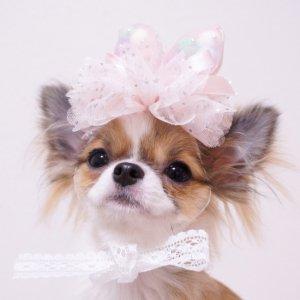 OH!MYHONEY☆チュチュバニー★犬用アクセサリー【ドッグウェアならene☆】