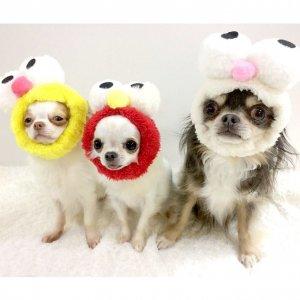 OH!MY HONEY☆お目目スヌード★かわいいスヌード★犬用スヌード【ドッグウェアならene☆】