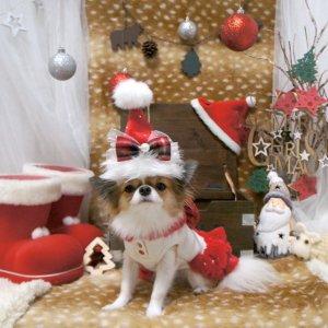 クリスマスハット★犬用パーティーグッズ【ドッグウェアならene☆】