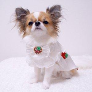 STRAWBERRYスタイ★犬用スタイ★イチゴ柄【ドッグウェアならene】