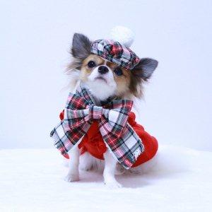snow check マフラー&ベレー帽セット★チェック柄★マフラー★ベレー帽★【ドッグウェアならene☆】