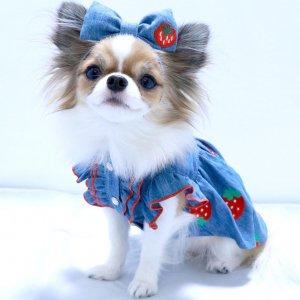 いちごデニムカチューシャ★いちご★カチューシャ★ヘアアクセサリー★【ドッグウェアならene☆】