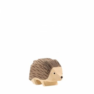 入荷!Hedgehog