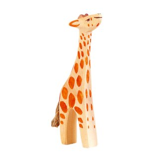 入荷!Baby Giraffe head up