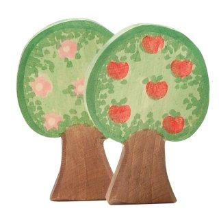 入荷!Apple tree
