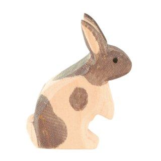 rabbit grey  up
