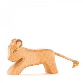 入荷!Lion cub running