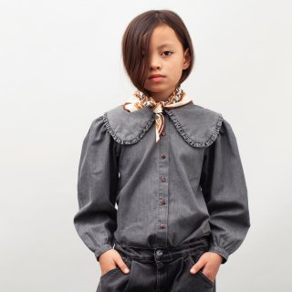 <img class='new_mark_img1' src='https://img.shop-pro.jp/img/new/icons14.gif' style='border:none;display:inline;margin:0px;padding:0px;width:auto;' />tocotovintage  Denim big collared blouse