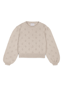 <img class='new_mark_img1' src='https://img.shop-pro.jp/img/new/icons14.gif' style='border:none;display:inline;margin:0px;padding:0px;width:auto;' />Braided Sweater (stone)