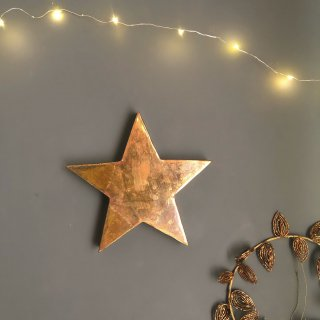 <img class='new_mark_img1' src='https://img.shop-pro.jp/img/new/icons14.gif' style='border:none;display:inline;margin:0px;padding:0px;width:auto;' />Les petits bohemes     brass star oxydee